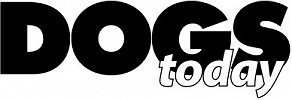 Dogs Today logo