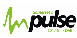 This is Pulse logo